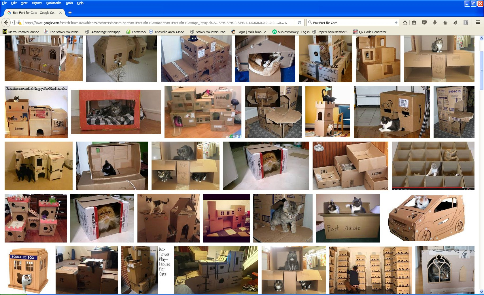 Free Cat Box Fort
