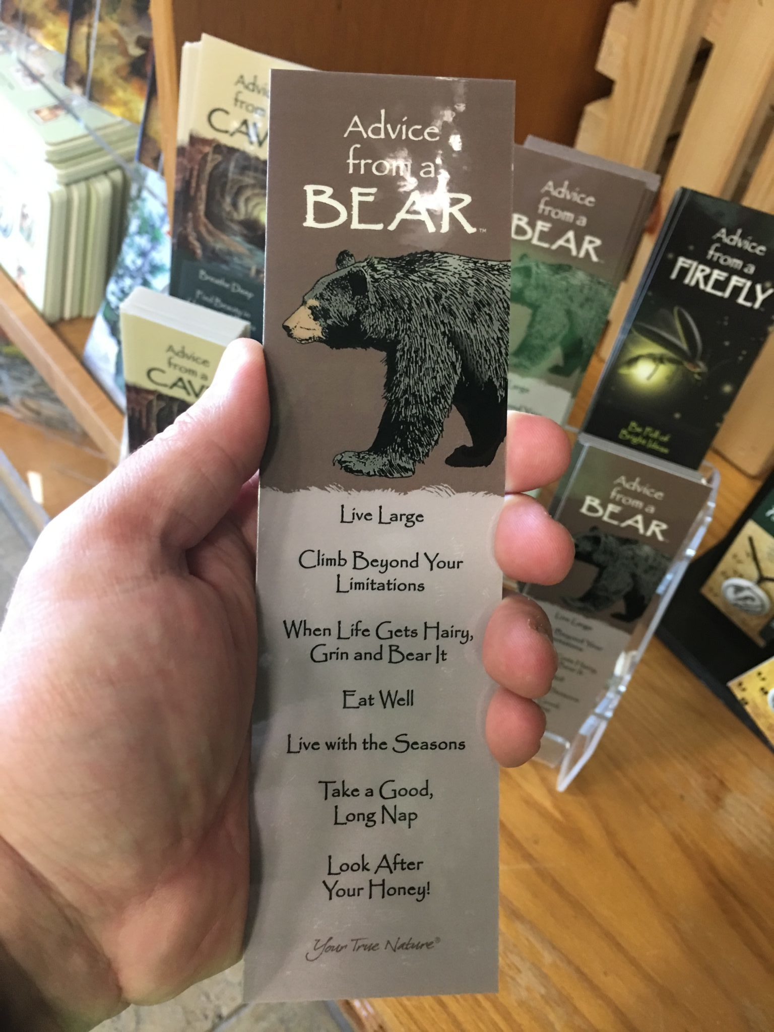 Advice from a Bear Bookmark