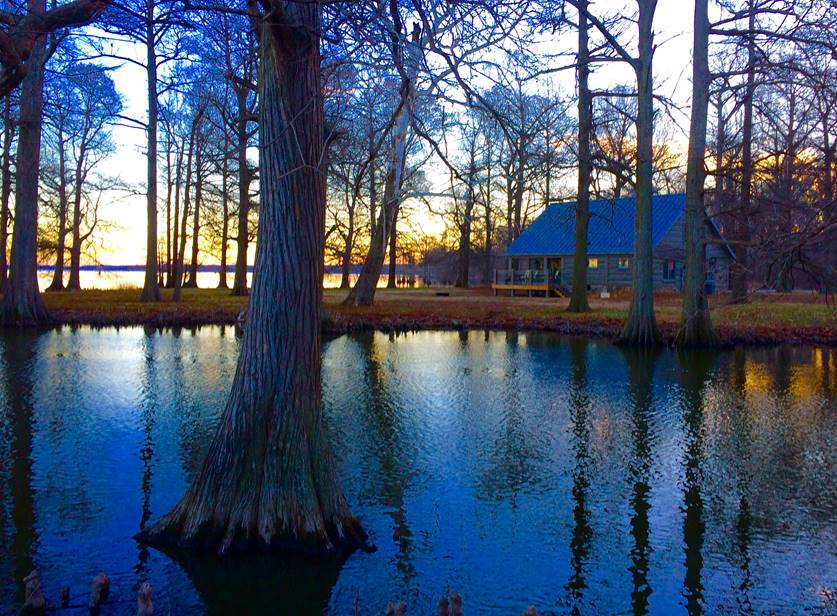 Cabin at Reelfoot Lake State Park | Tennessee State Parks Photo
