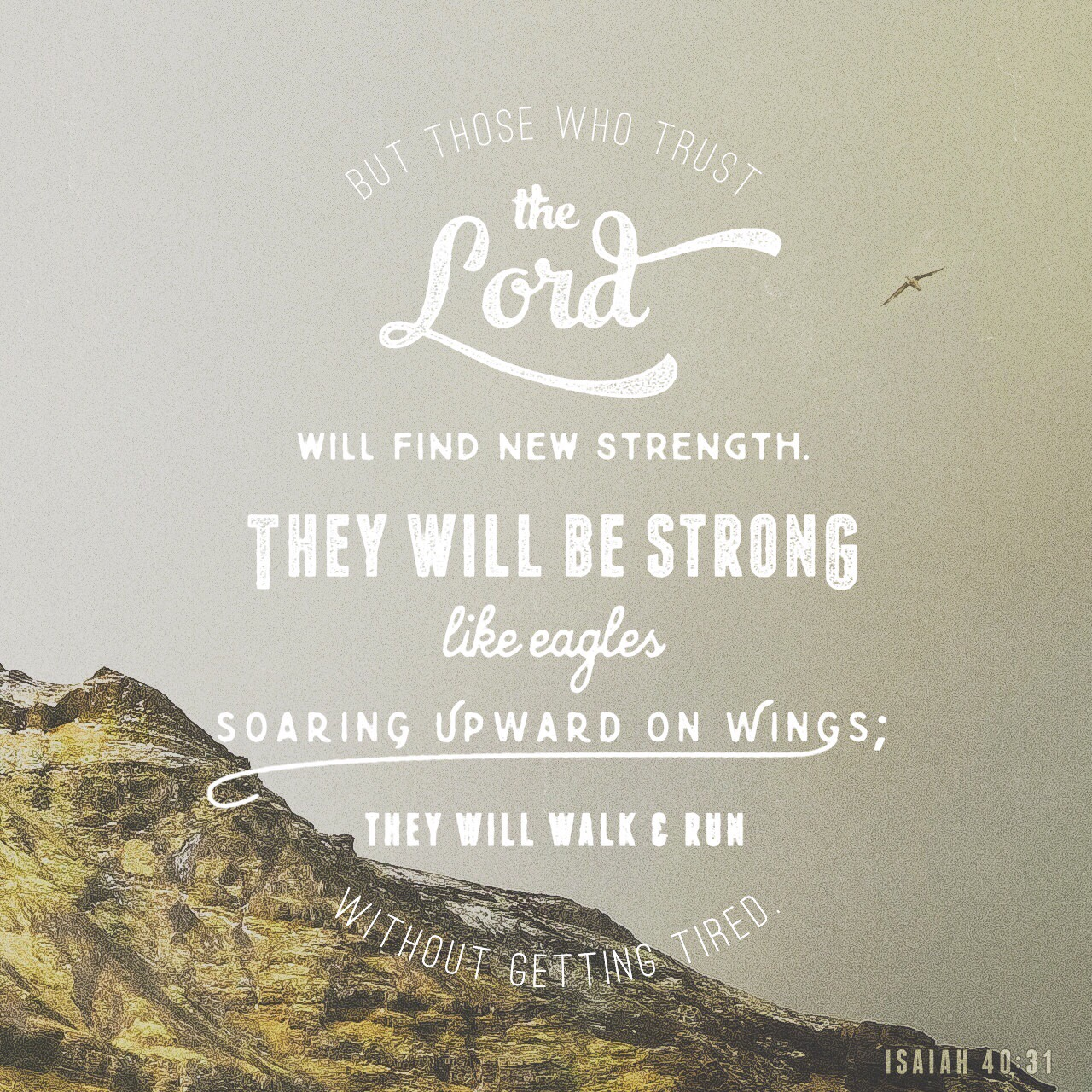 """VOTD June 20, 2019 """"Yet those who wait for the LORD Will gain new strength; They will mount up with wings like eagles, They will run and not get tired, They will walk and not become weary."""" ISAIAH 40:31 NASB"""
