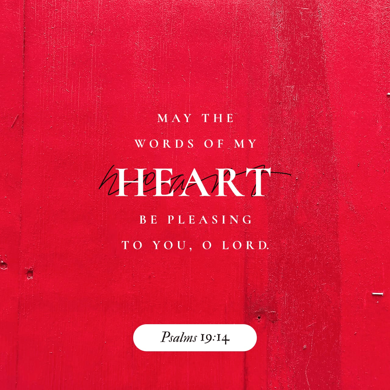 "VOTD November 21 - ""Let the words of my mouth and the meditation of my heart Be acceptable in Your sight, O LORD, my rock and my Redeemer."" Psalms‬ ‭19:14‬ ‭NASB‬‬"